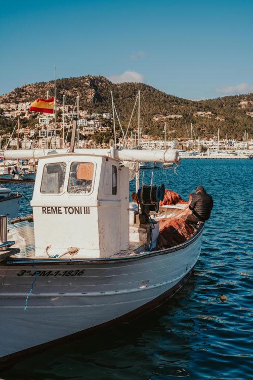 Mallorca in February