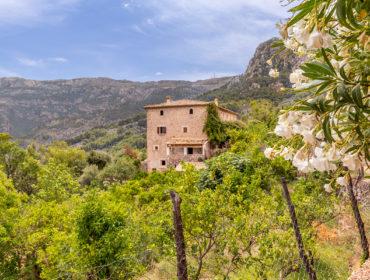 Living Blue property Mallorca